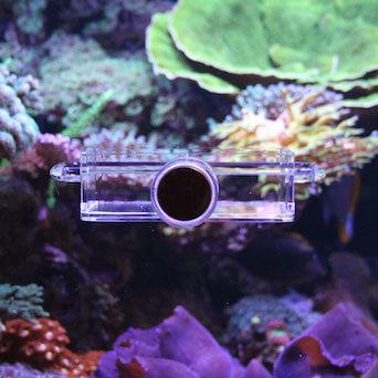 Seahorse Buddy feeder / feeding station Gallery 6